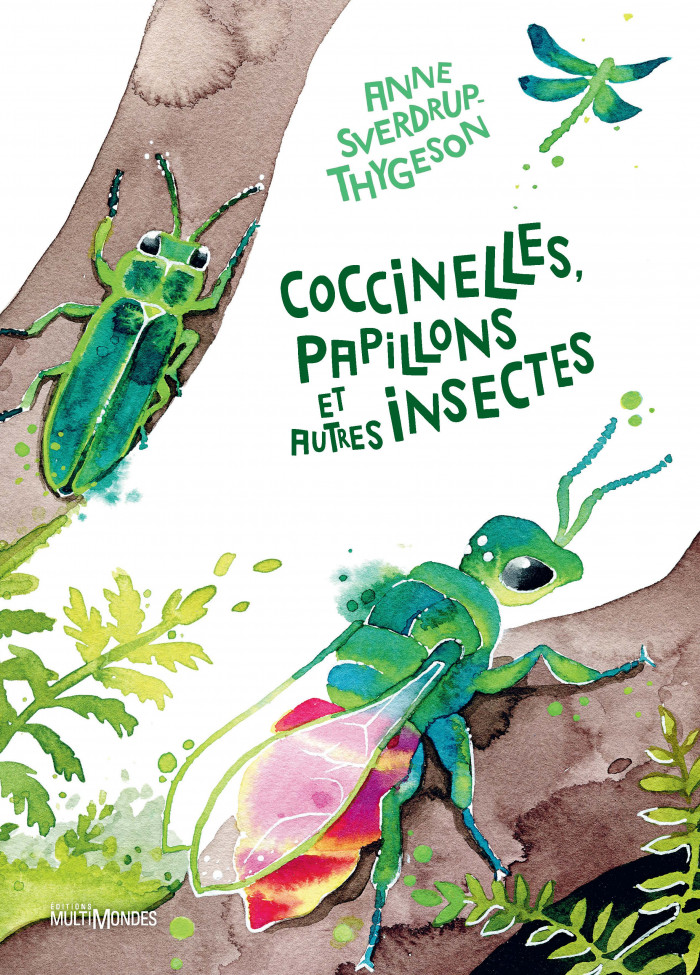 Couverture de Coccinelles, papillons et autres insectes