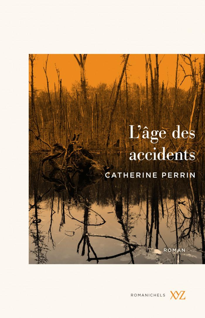 Couverture de L'âge des accidents
